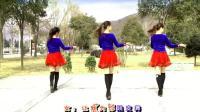 广场舞: 蝶依广场舞《欢乐颂》反面示范