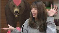 防御型养成游戏:养一只野性萌宠大灰熊