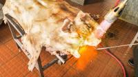 吃货老外感叹还是中国菜最好吃-广东均安蒸猪