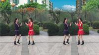 健康一生广场舞 .双人水兵舞《拉萨夜雨》编舞: 太湖一莲。演示: 健康一生。园凤