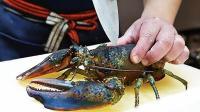 一斤多大龙虾, 用来煮面? 这样太好吃了