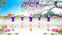 阳光美梅原创广场舞《2018发发发》2-动感32步-编舞: 美梅2018最新广场舞视频