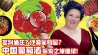 《品尝中国》第十四期 中国葡萄酒(下): 山西与宁夏的葡萄酒庄 14