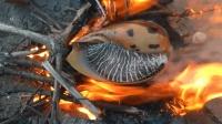 两兄弟潜入海底抓大海螺, 沙滩生堆火直接烤着吃