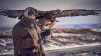 獵奇 第一百三十八集  罗伊德新玩法——不一样的雪地猎鹰行动