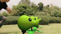我的世界: 真人版植物大战僵尸对抗骷髅, 豌豆不堪一击, 最后惨胜
