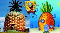 10栋真实的动画屋, 你最爱哪个呢?