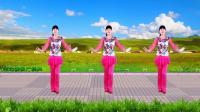 河北青青广场舞《南泥湾》24步附口令分解, 轻松学会的广场舞