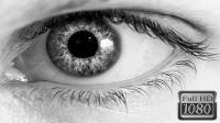 【飞竞】当你的世界失去了色彩《Color Blind》色盲试玩评测