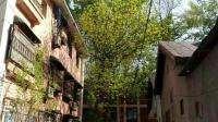 原创微纪录片《春·风·北京》带你感受北京春天的绿色春意和突如其来的大风