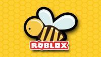 【豪宝宝】Roblox 虚拟世界 小蜜蜂模拟器我的新装扮好看嘛 乐高小游戏