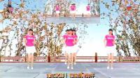 阳光美梅原创广场舞《玫瑰花开》步子舞-编舞: 美梅2018最新广场舞视频