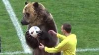 俄罗斯一场三级联赛, 竟找了只熊当开球嘉宾