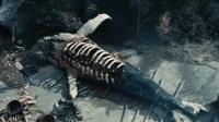 外星生物坠落在地球, 方圆百里的生物都被吃掉, 凶残无比!