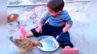 小萌娃坐地上吃饭, 结果两只小鸡走过来, 接下来的一幕让萌娃傻眼