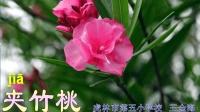《4.夹竹桃》——虎林市第五小学校----王金海