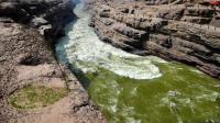 为什么黄河的水越来越清澈了?