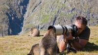动物世界中精彩的镜头都是怎么拍出来的? 摄影师真是满满的套路!