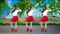 动感DJ版《玫瑰花开》32步广场舞, 好看好学, 音乐还好听!