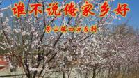 桃花盛开的村庄——四方台