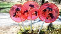 会开花的棒棒糖, 棍子埋土里开出玫瑰花, 吃出一个小花园