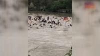 现场: 广西桂林两艘龙舟翻船 5人已无生命体征仍有多人失联