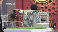 第四十九期 少年工匠-温州市职业中等专业学校-物联网应用技术