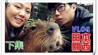 【鱼乾】关西八侠 日本VLOG [下] - 泡温泉的水豚! 传说中的鲸头鹳?
