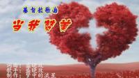 歌曲《当我赞美》  基督教音乐   车载MV   卡拉ok字幕