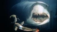 科学家造出变种鲨鱼, 智商比人类还高! 还会物理学, 简直无敌了