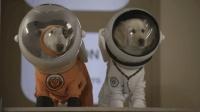 五只汪星人小狗偷偷跑进人类的飞船, 结果被送上太空, 在月球探险!