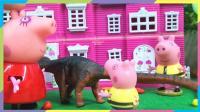 小猪佩奇之乔治的生日礼物 梁龙先生 恐龙
