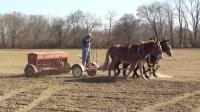 四匹马在耕种, 抵得上多马力的拖拉机