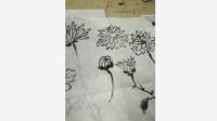 各类菊花的画法, 好简单