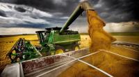 美国粮食产量全球第二, 看完他们的机械化收割也不过如此