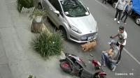 如果没有监控记录, 没人知道这个男人暴打狗狗的原因