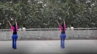 阳光美梅广场舞【梨花白】3-古典舞-2018最新广场舞视频