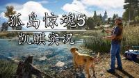 凯麒《孤岛惊魂5》合作实况 P12解放白尾山区