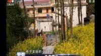 陕西某美丽山村 为发展旅游业改民屋为特色民宿