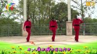 杨丽萍广场舞 看透爱情看透你 DJ32步入门舞蹈