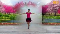 阳光美梅广场舞【DJ我喜欢你】2-DJ版-2018最新广场舞视频