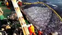 渔网捕到的鱼太多, 结果渔船上的机器拉不动了, 这就尴尬了