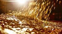 【金币与人生】在这个王国, 金币就是一切!