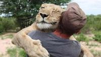 """被遗弃的小狮子, 遇到了俩小伙, 被宠成了""""小公主"""""""