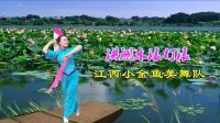 小金鱼美舞队《洪湖水浪打浪》视频制作: 映山红叶