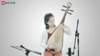 新爱琴从零开始学琵琶 第3课《按音位置和基本规律》讲解
