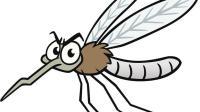 灭蚊还用蚊香吗? 教你一个安全无毒的小妙招, 家里蚊子全都不见了