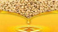 不收购我们国自产大豆, 却大量进口美国大豆, 原因竟然是这样!