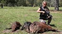 美国澳洲野猪泛滥, 动用军队也没用, 中国网友: 吃就完事了!