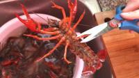 很多人清洗小龙虾的方法都错了, 看了视频才知道, 这才是最佳方法